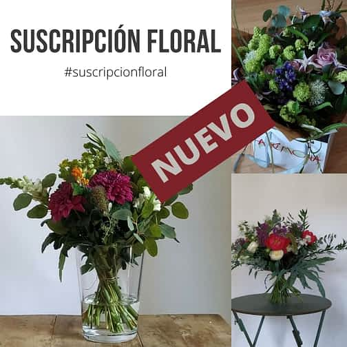 suscripcion floral